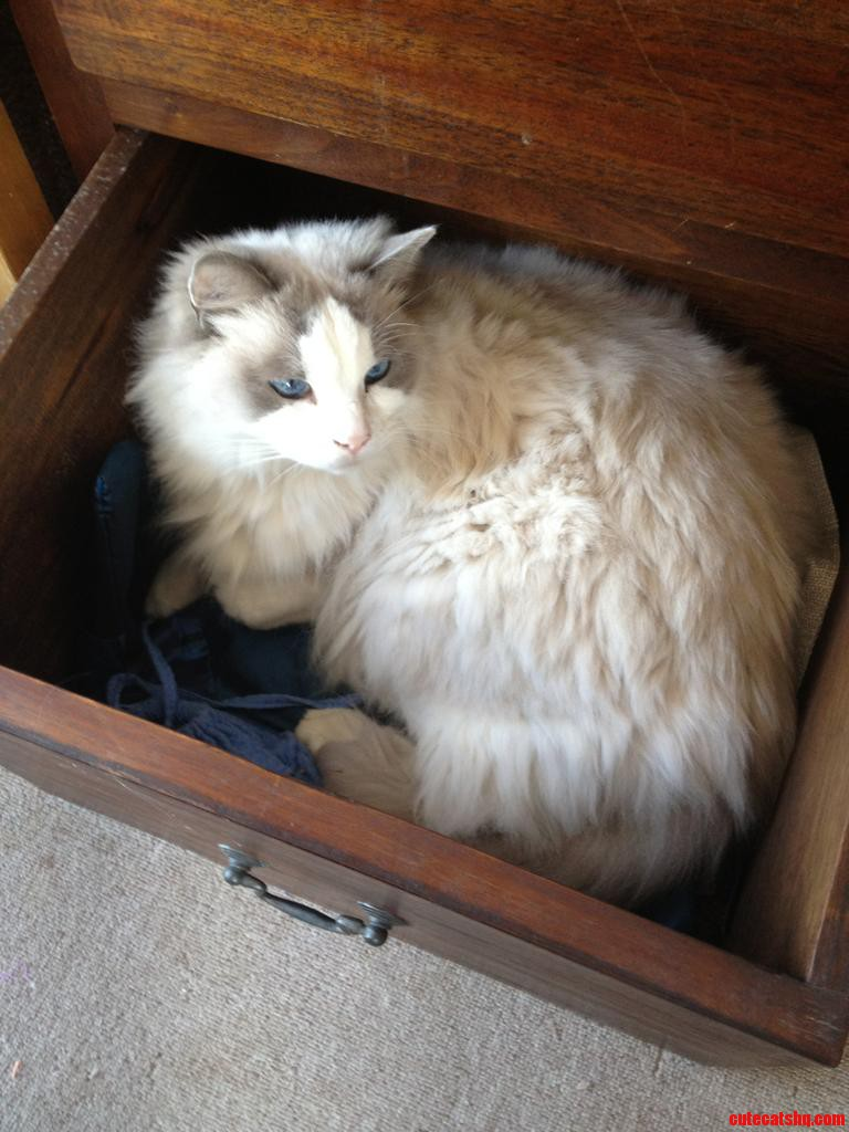 Busted In The Linen Drawer  Lucky Hes Beautiful
