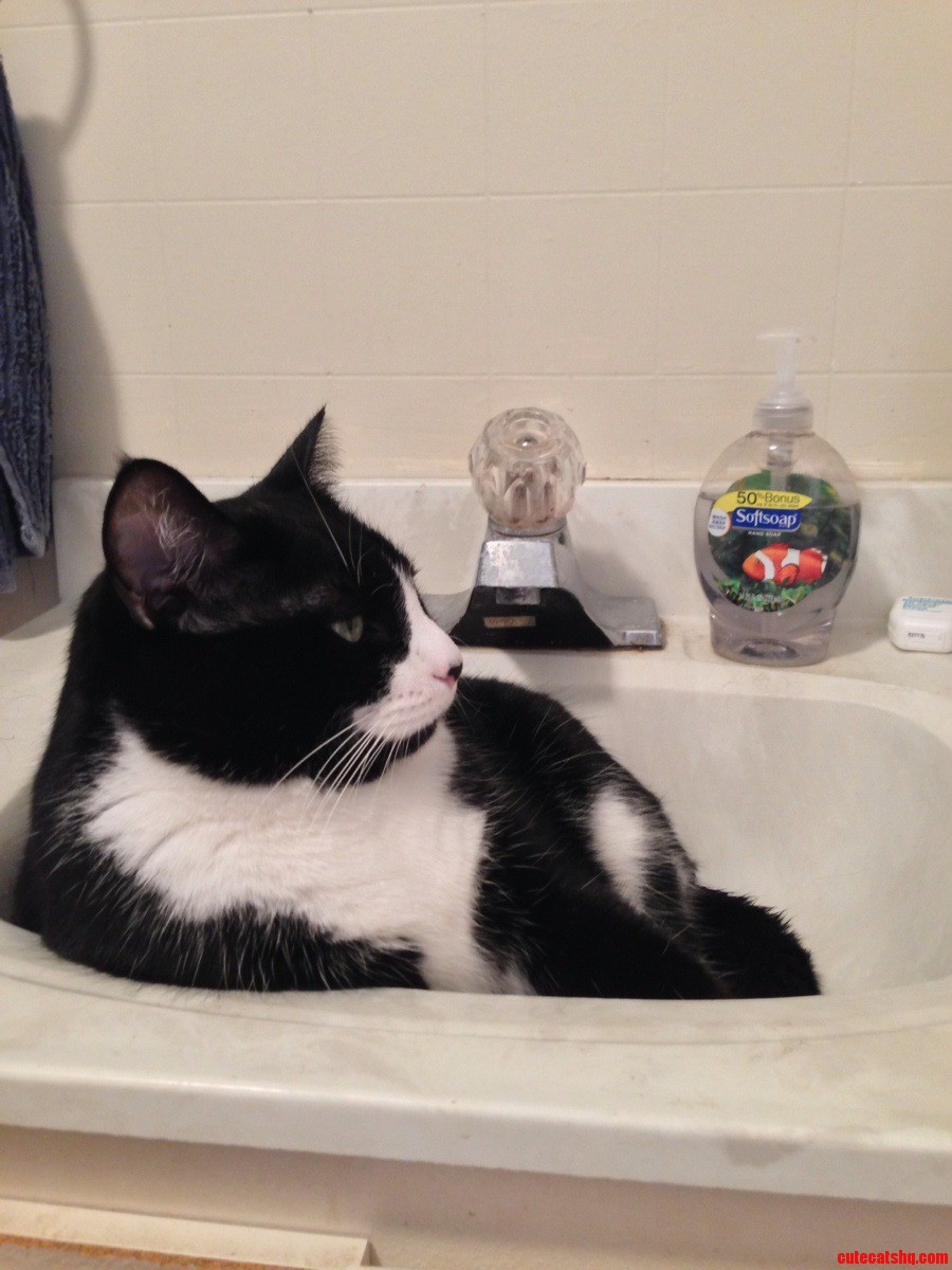 He Never Lets Me Use The Sink.
