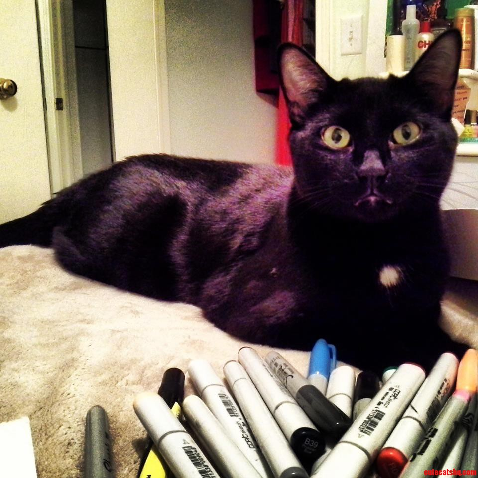 Heres Tyrone Helping Me Draw