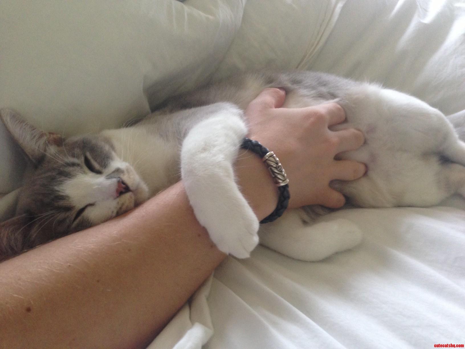 Its Okay. I Dont Need My Arm Anyways.
