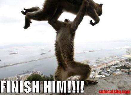 Mortal Kombat Kitty