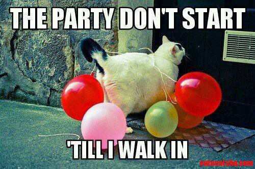 The Party Dont Start…