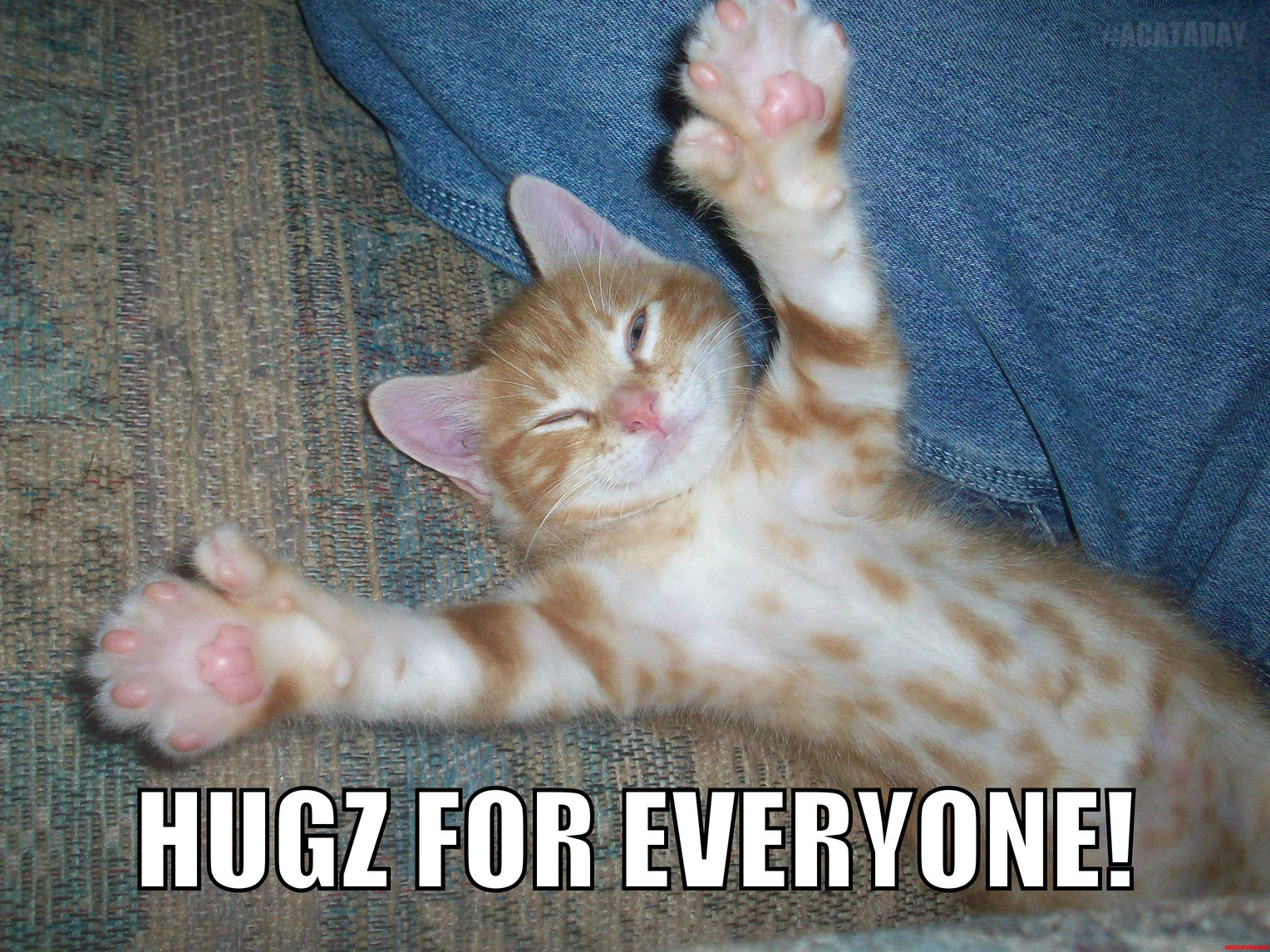 Hugs For Everyone