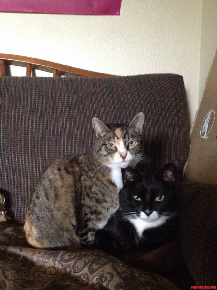 Meet Dove And Lucas.