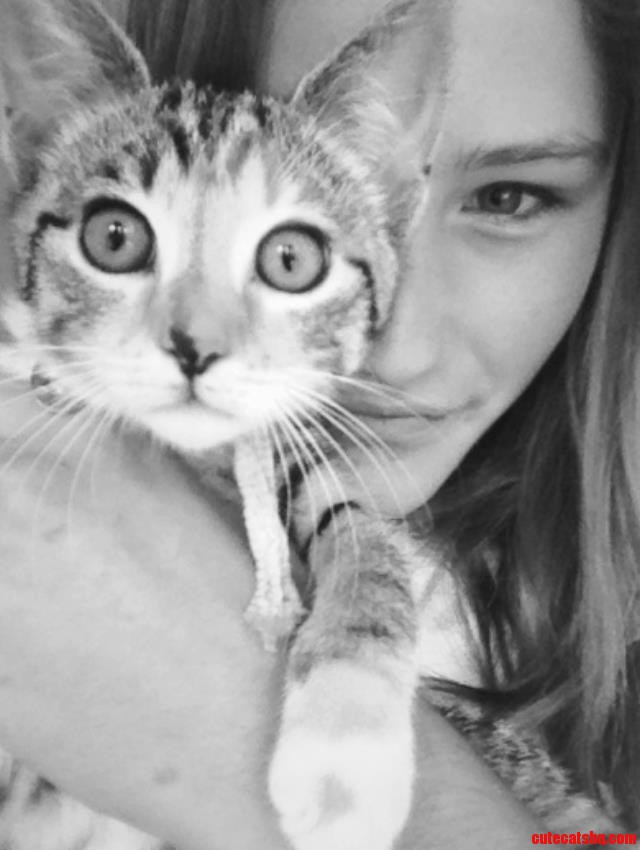 My Kitten Yolandi