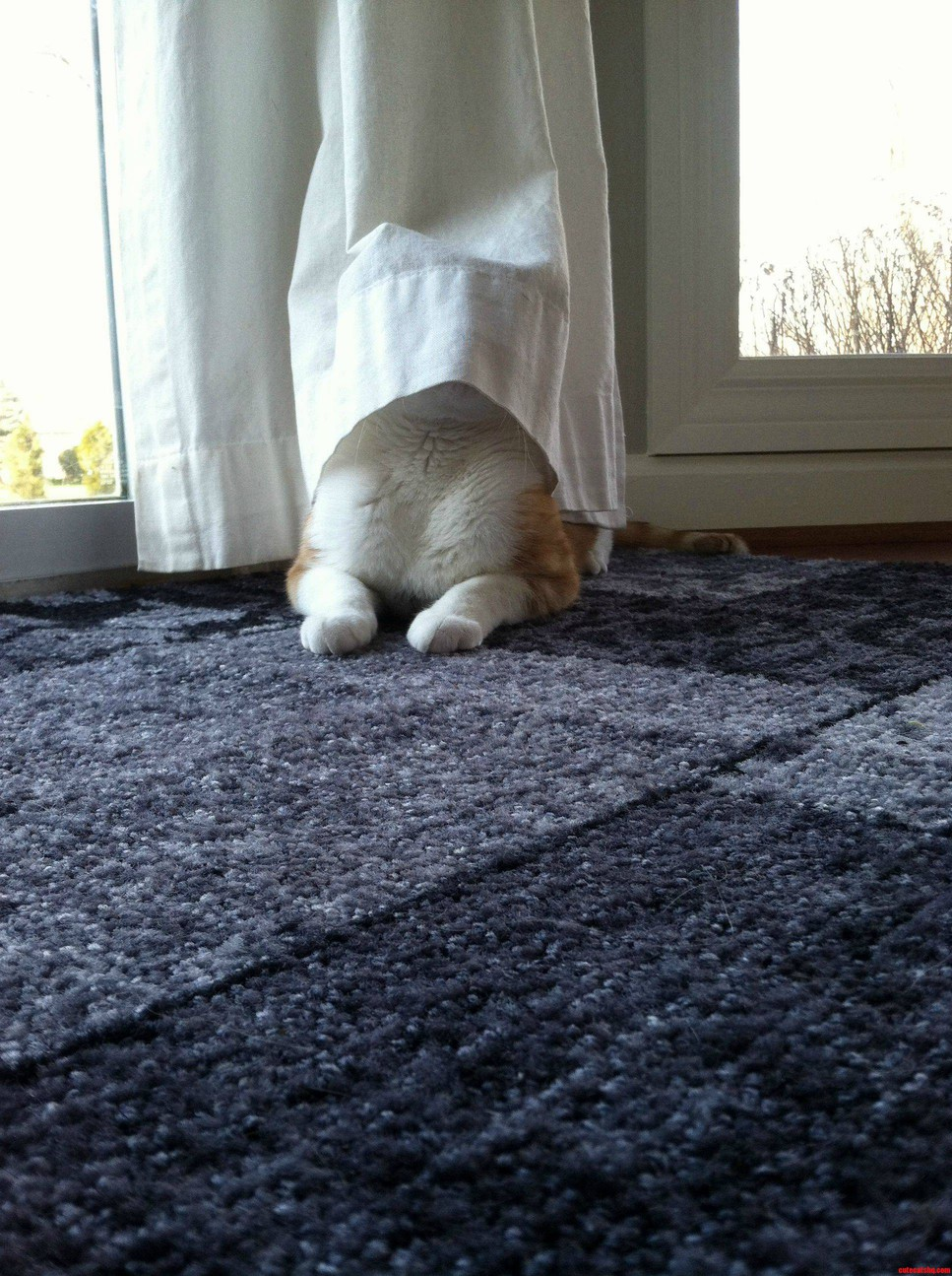 I Cant See You Therefore You Cant See Me.