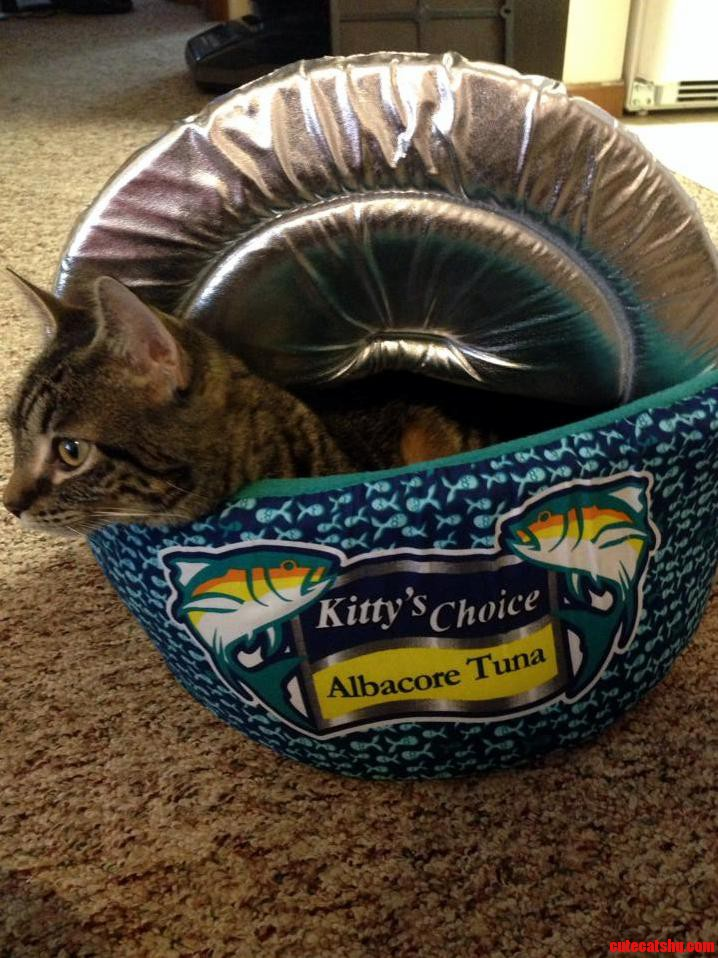 I Think There Was A Mix Up At The Tuna Cannery.