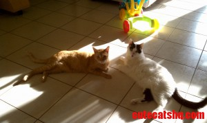 Ish And His New Buddy Obi.