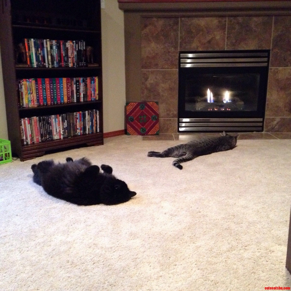Recently Rearranged Our Living Room To Take Advantage Of The Fireplace. I Think Theyre Pretty Happy With The Change.