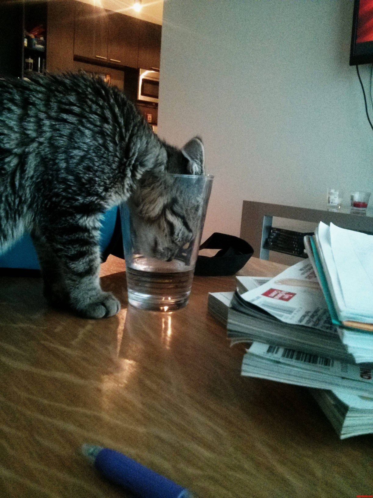 Water Thief