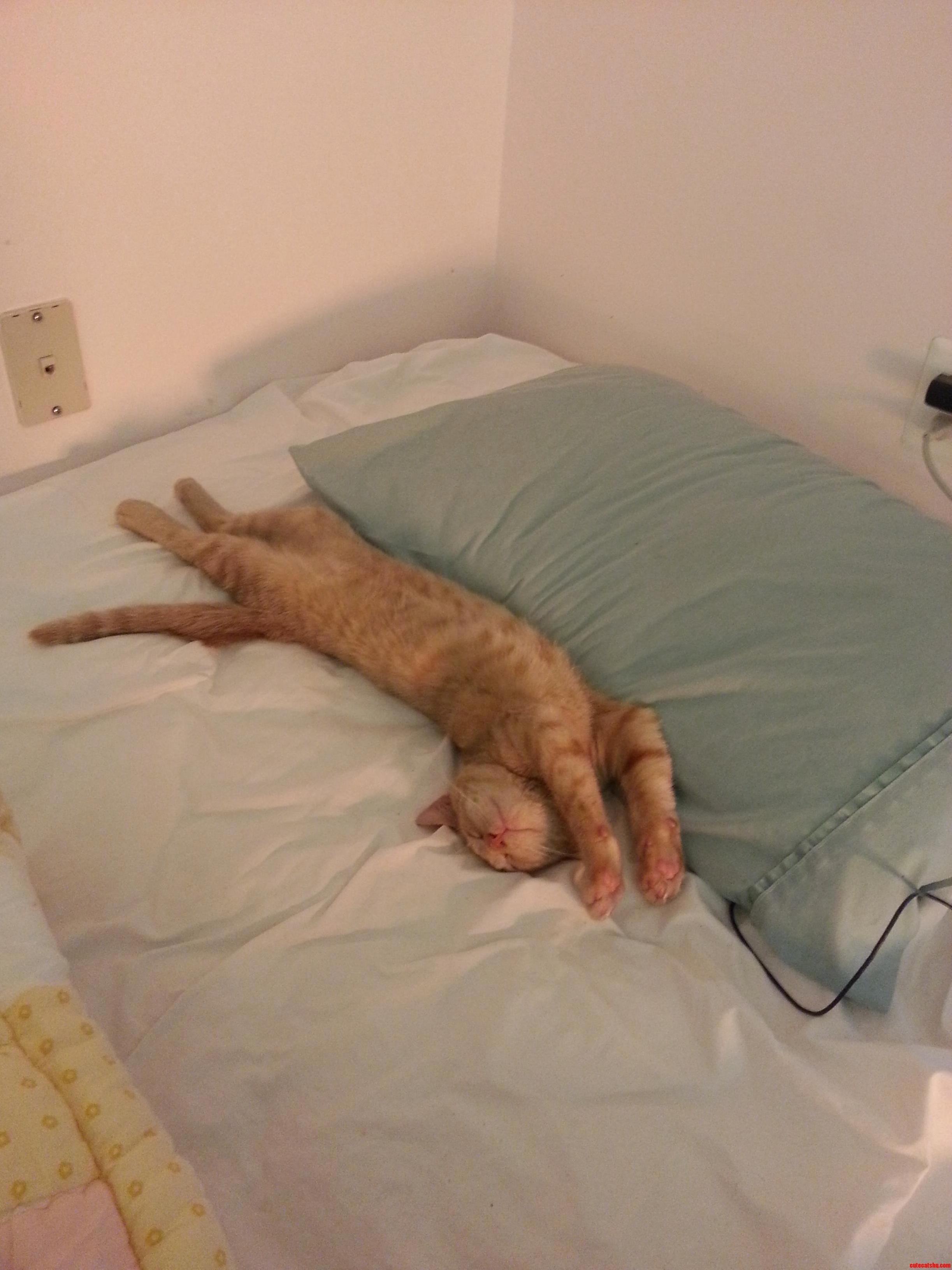 Where Do I Get To Sleep