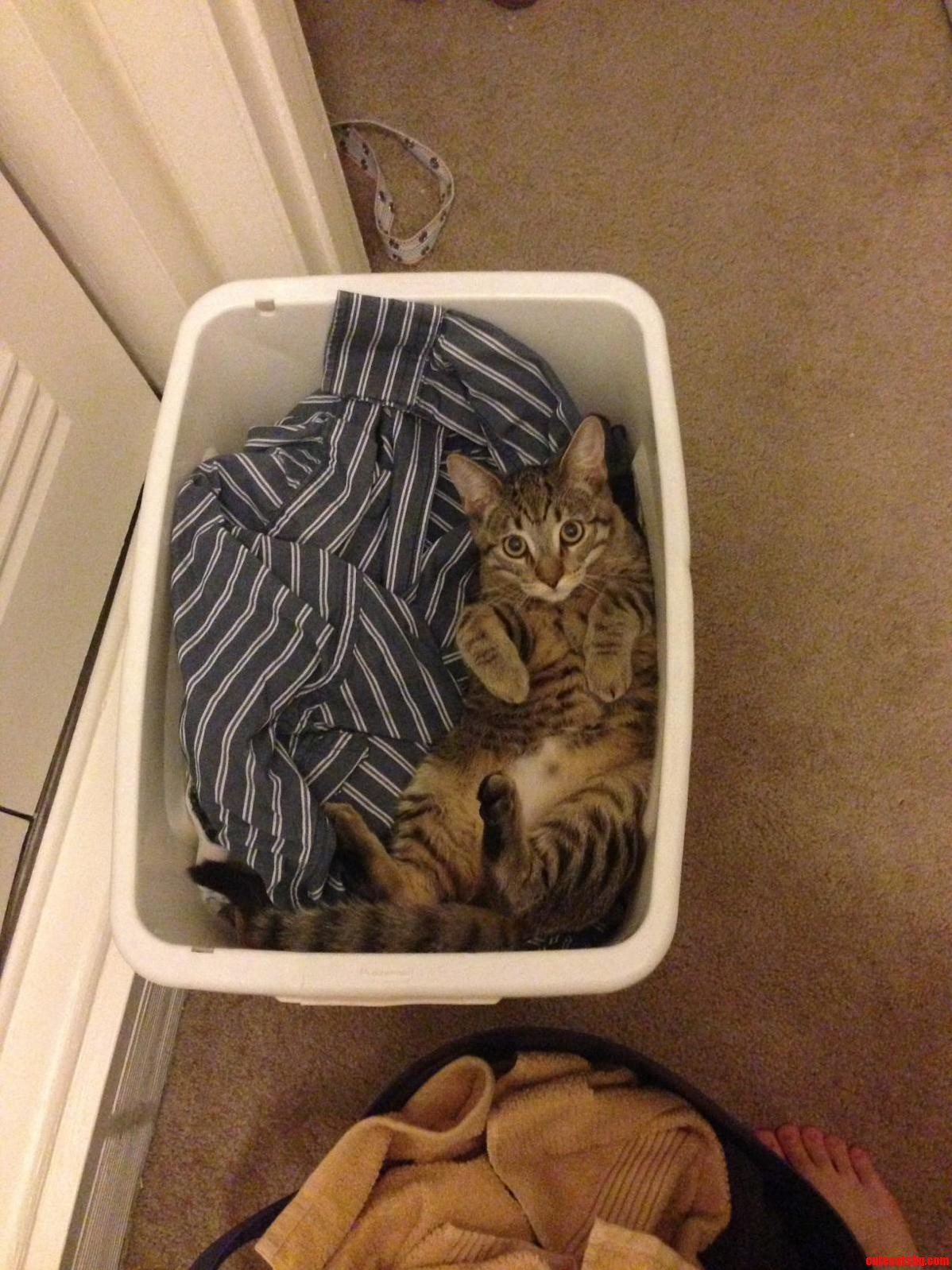 It Always Has To Be Clean Clothes…