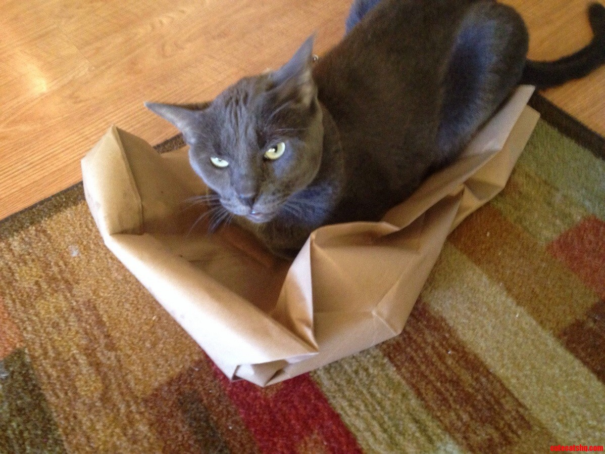 Recycled The Box. Floyd Had To Improvise Not To Happy About It.