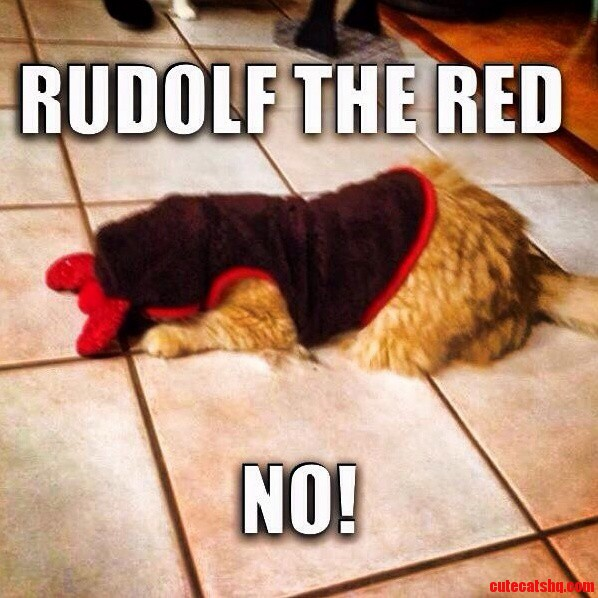 Rudolf The Red….No Oc