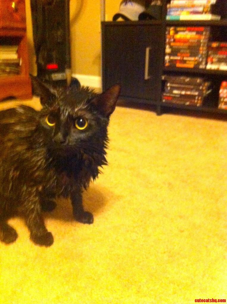 Somebody Doesnt Like Baths.
