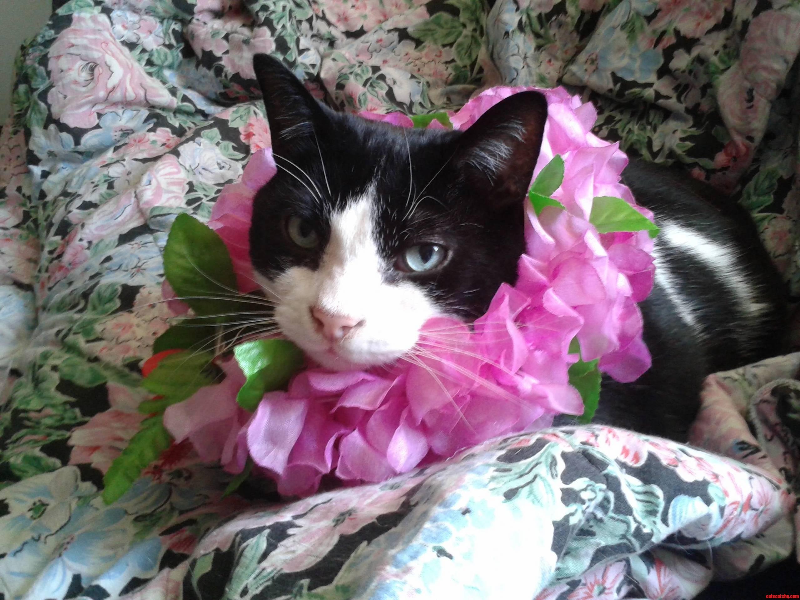 Hes A Big Fan Of Flowers