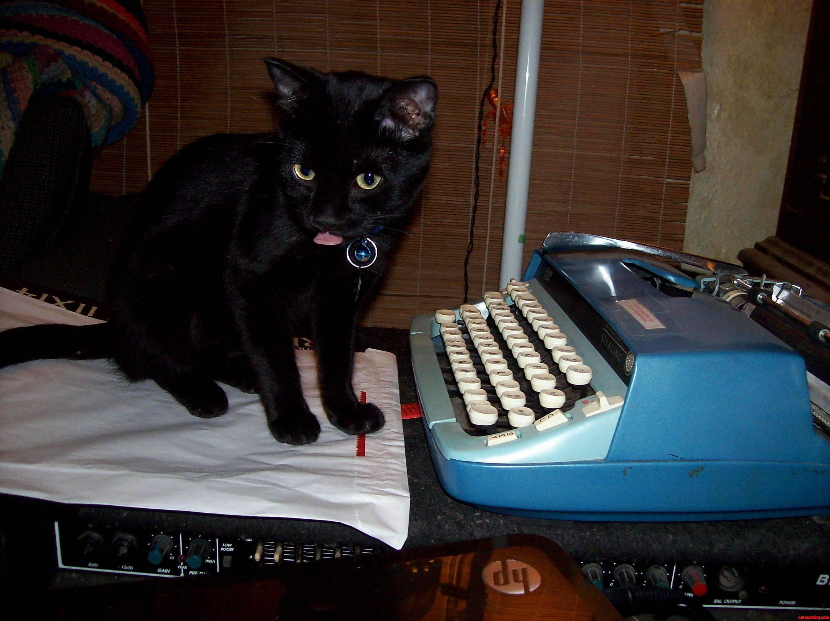Humbert Battles Writers Block