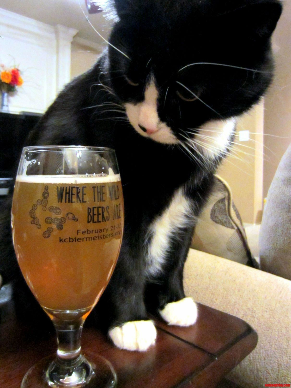 This Isnt The Beer I Ordered…