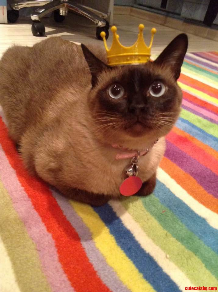 We Made A Crown For Our Little Princess
