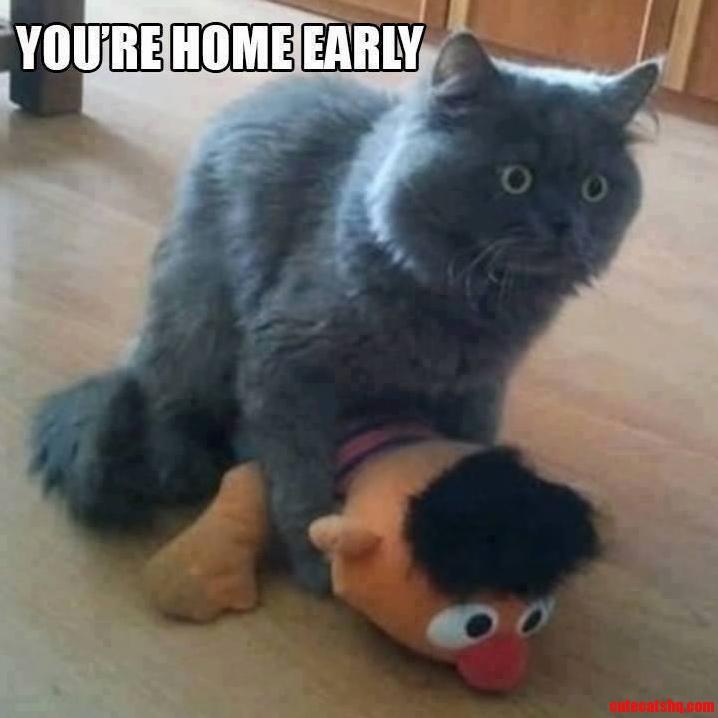 Hooman Leaves Work Early.