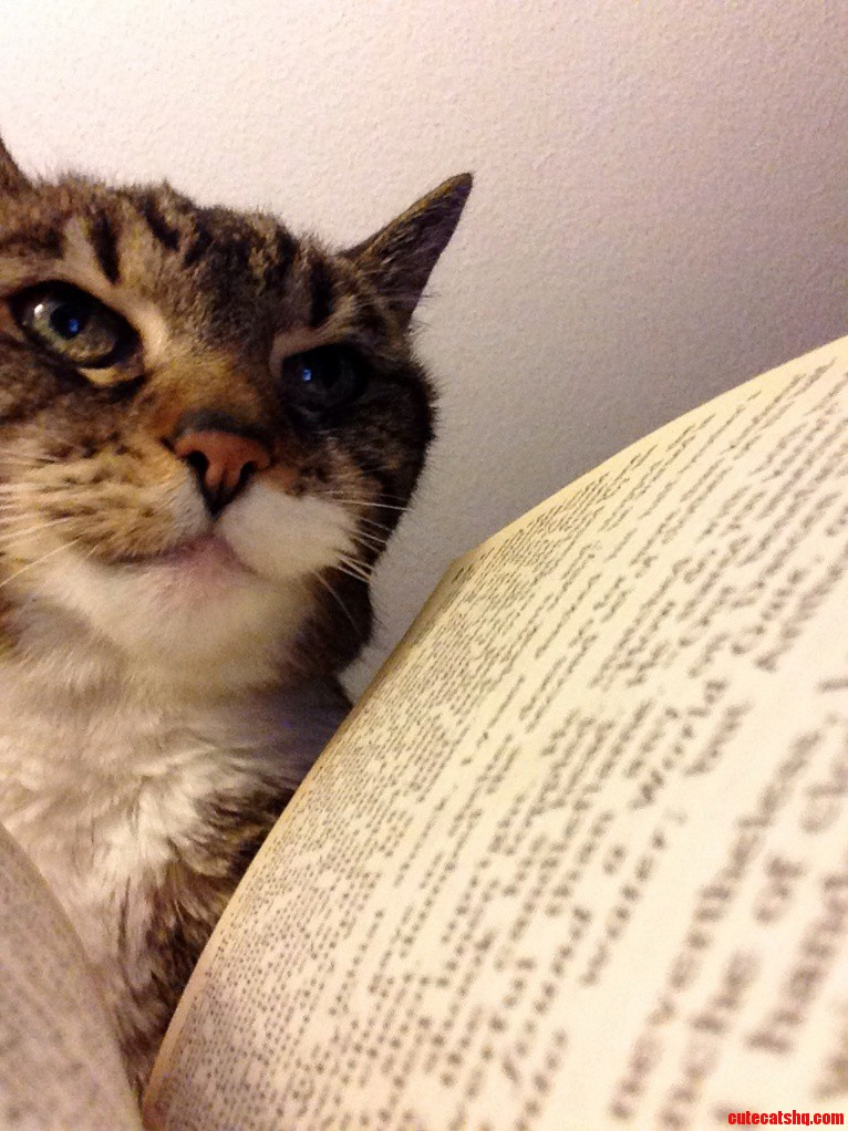 You Should Put The Book Down. Now.