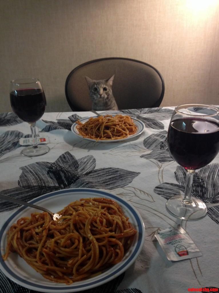 My Dinner Date Last Night