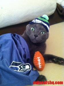 12Th Kitty. Go Seahawks