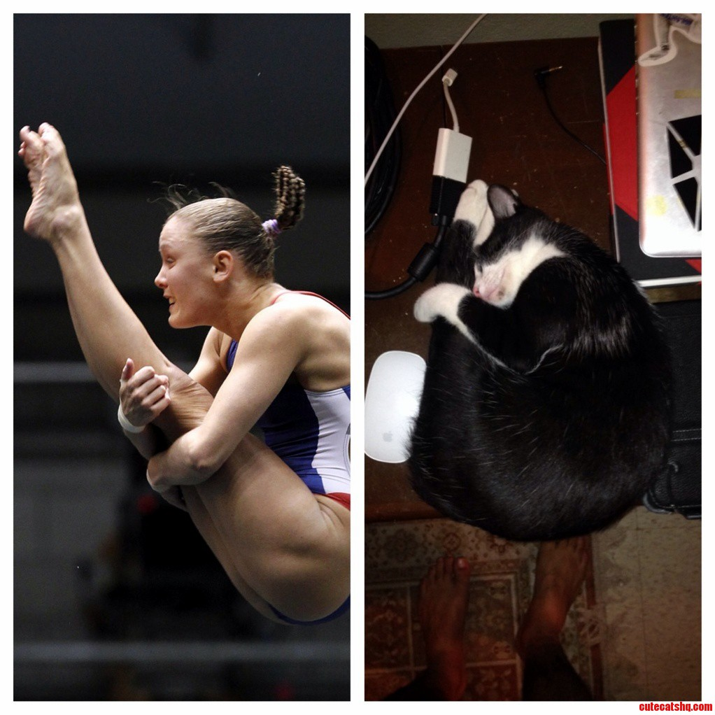 My Cat Likes To Imitate Athletes Sometimes.