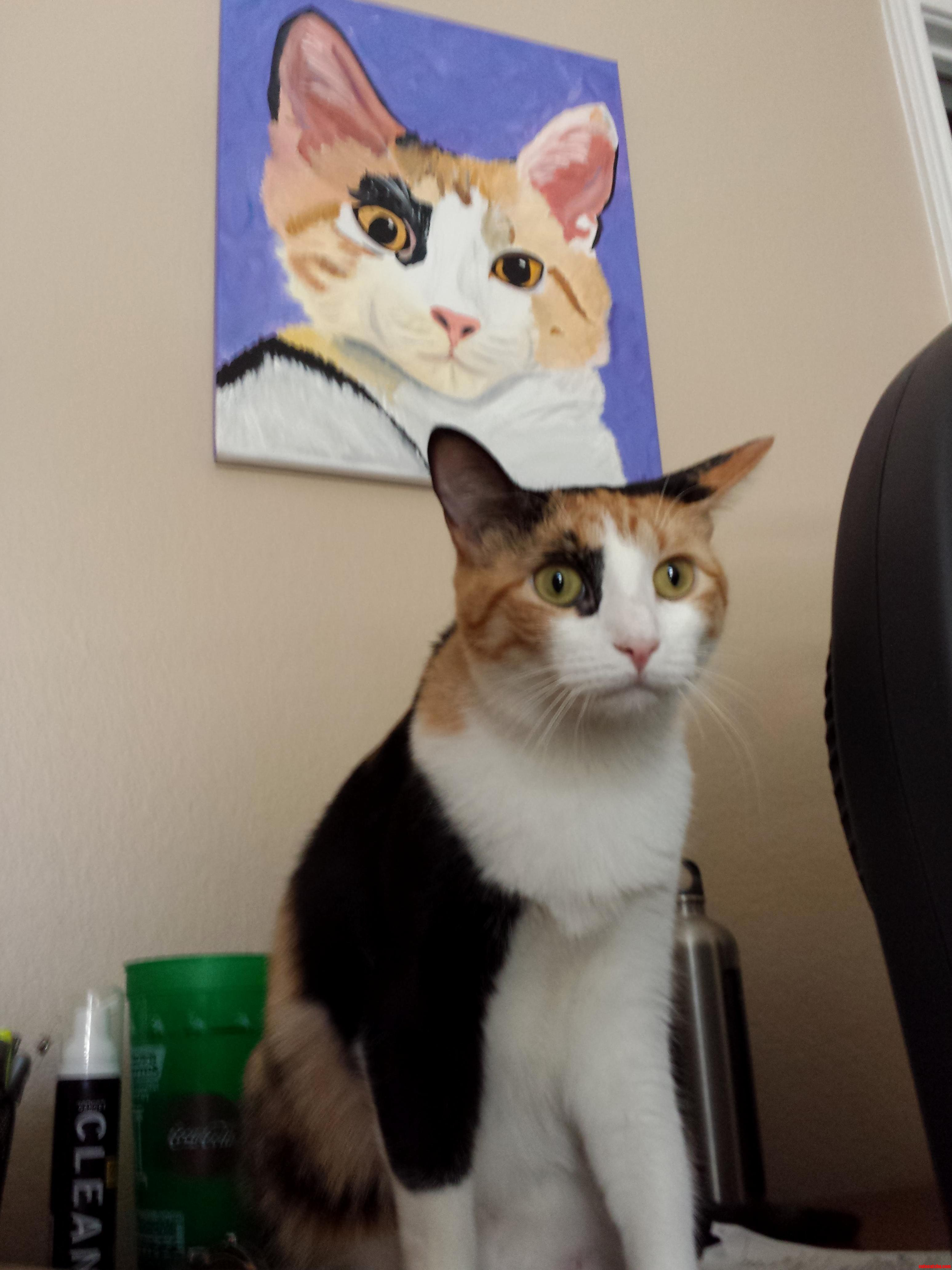 Girlfriend Painted A Picture Of Jane When She Was A Kitten. Jane Is Not Amused.
