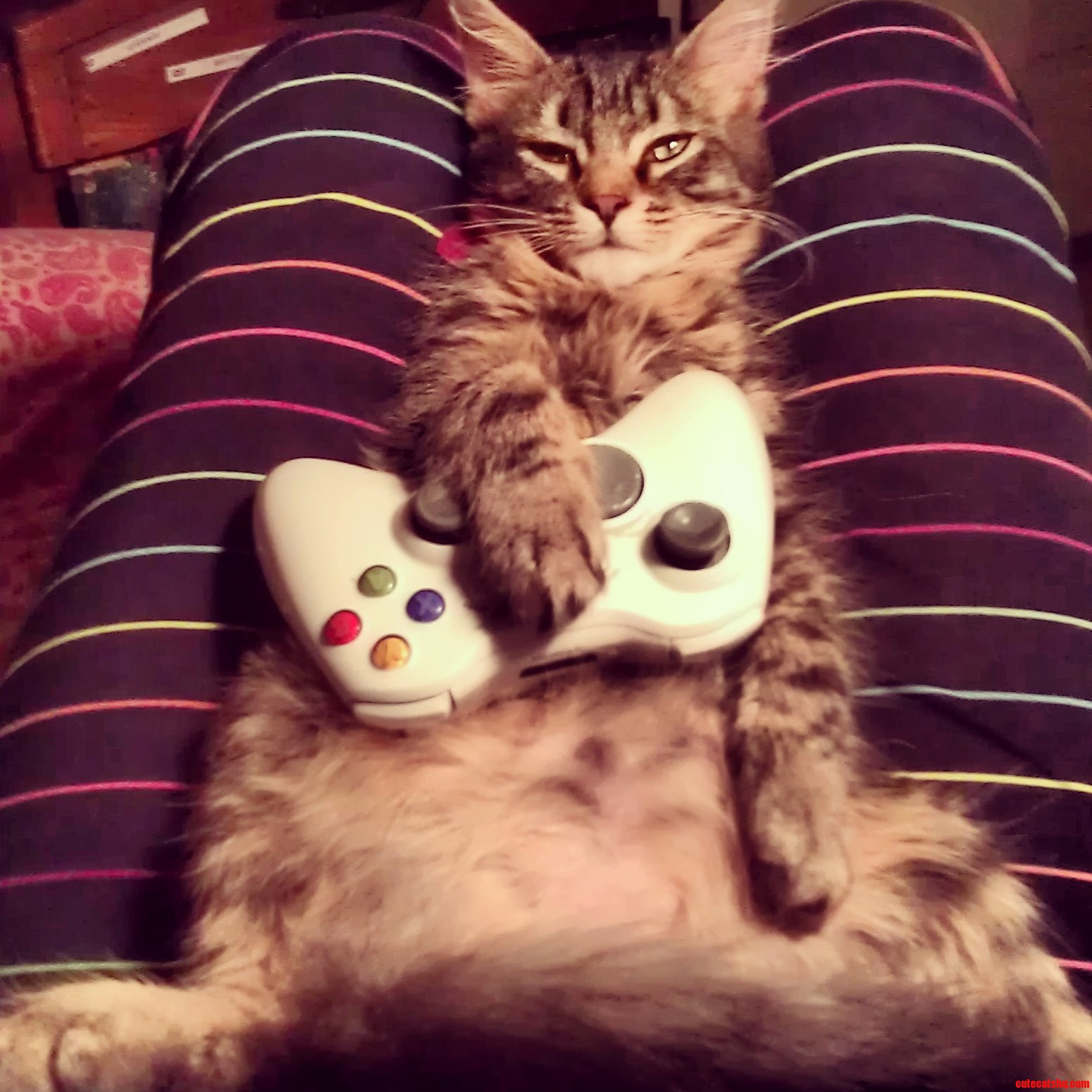Player Two Has Joined The Game..