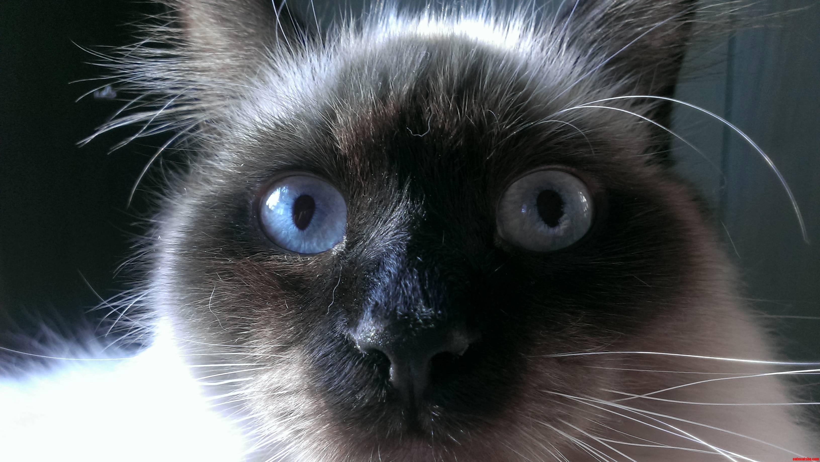 He always looks surprised