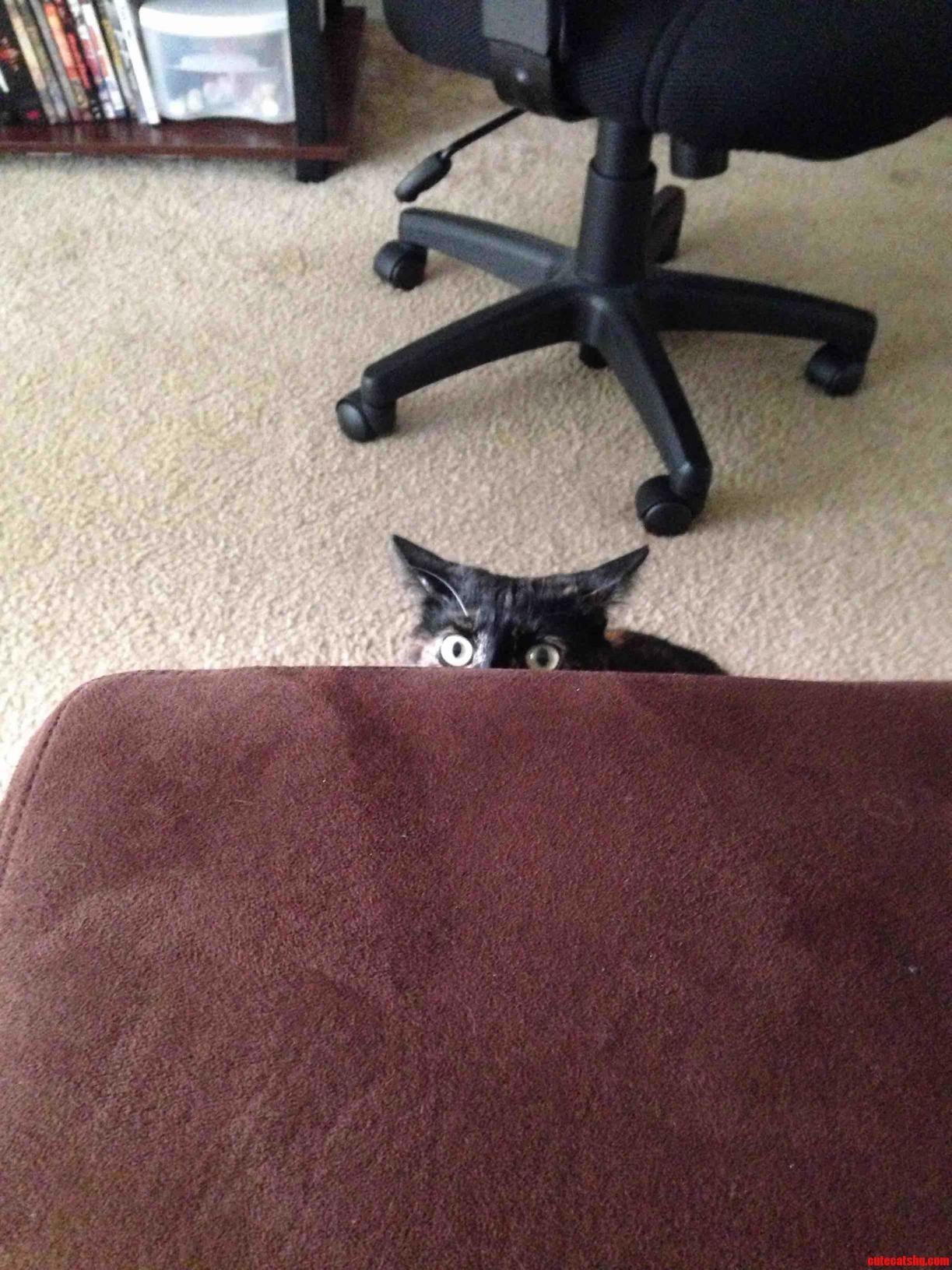 I ve got my eye on you