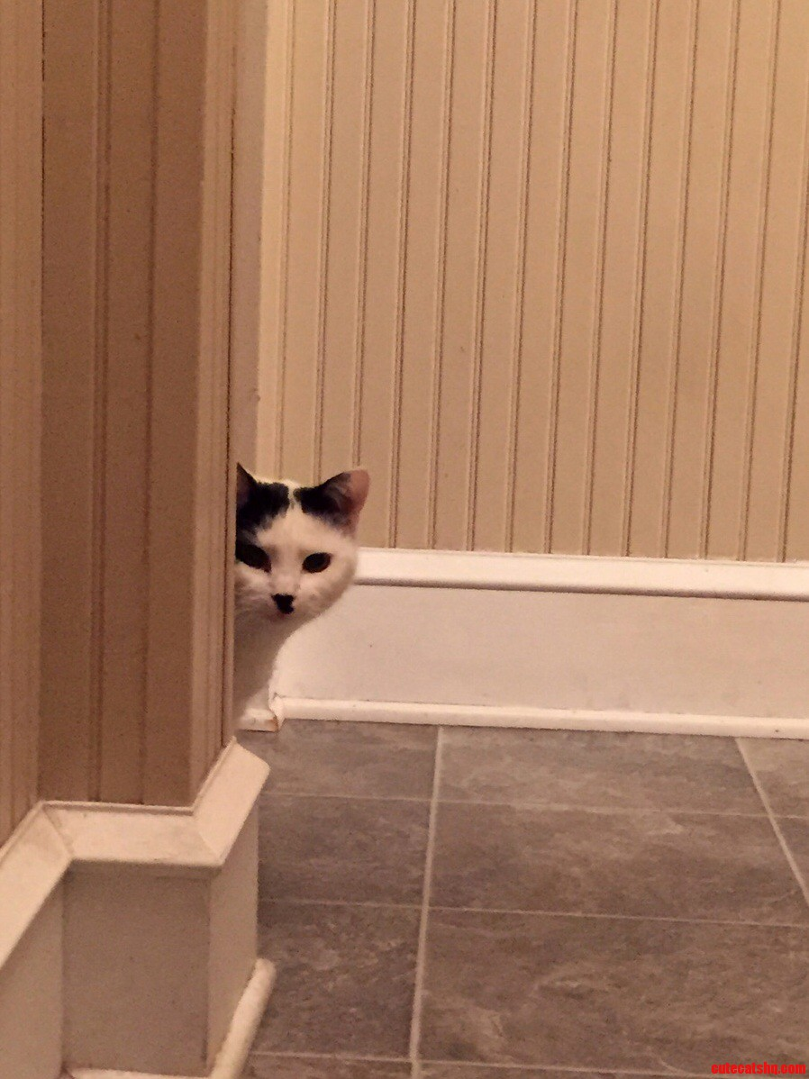 My friends call her hitler she is sneaky