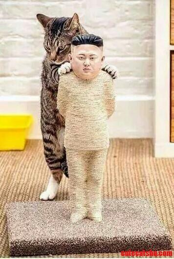 Kim jong un scratchpost