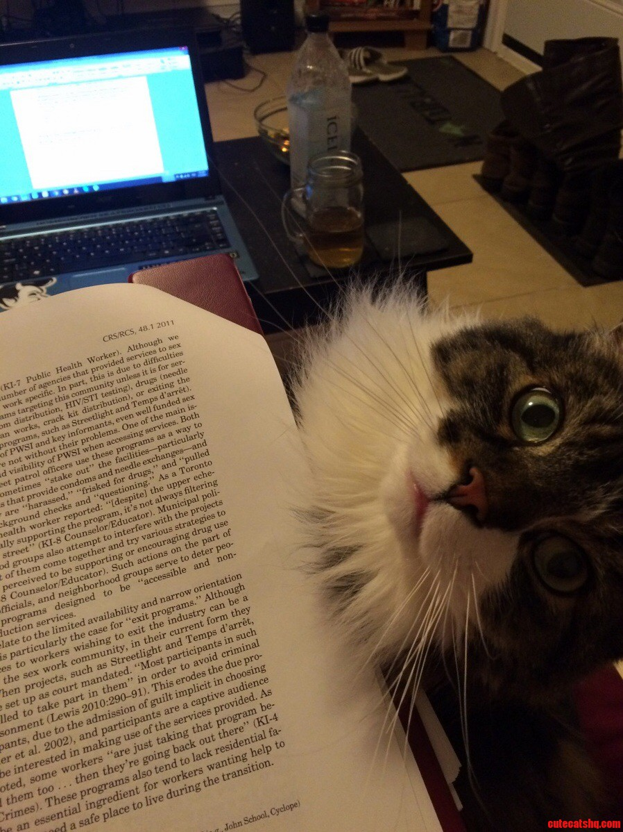 Procrastination is already a problem. hes not helping. x-post raww
