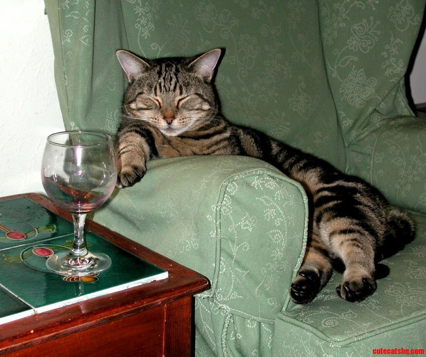 Tom relaxing after a hard day being awesome