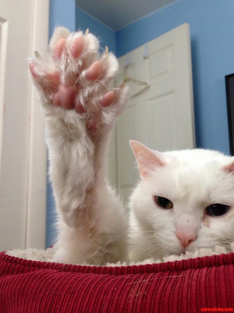 Louis wants a high five