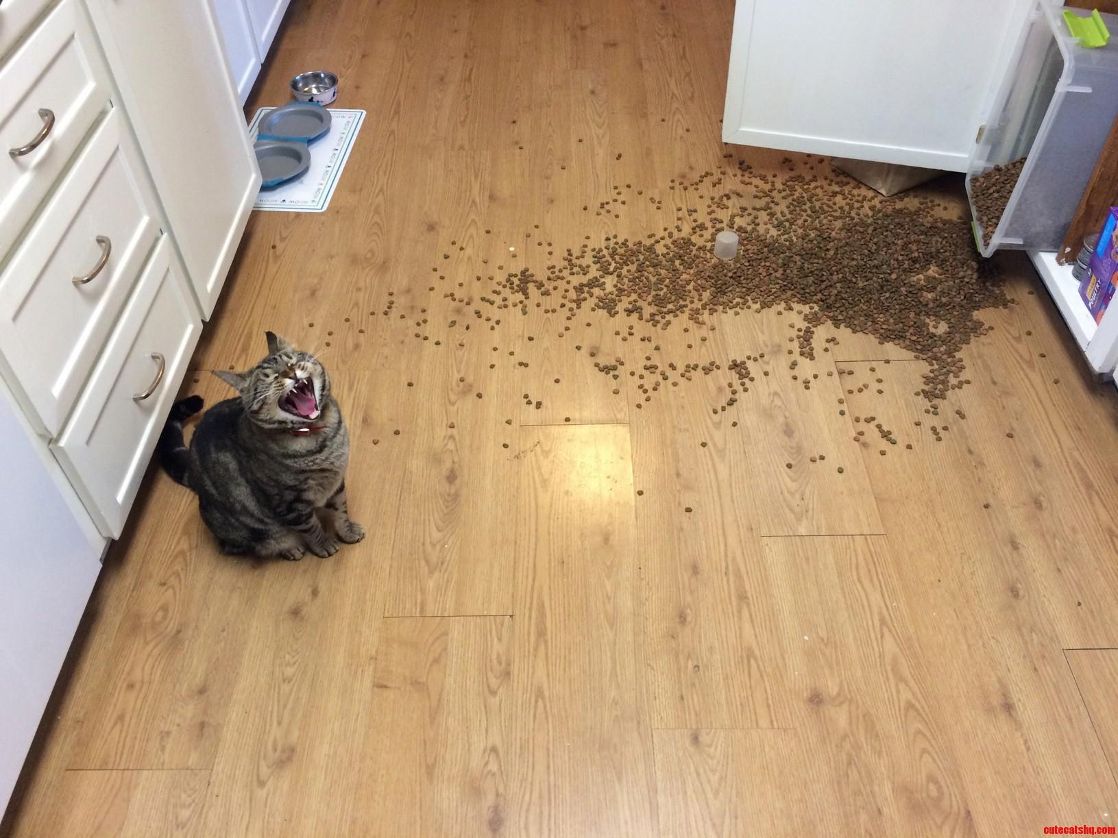 Fix my food