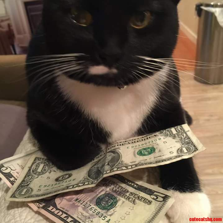 I ll see you and raise you a dollar.