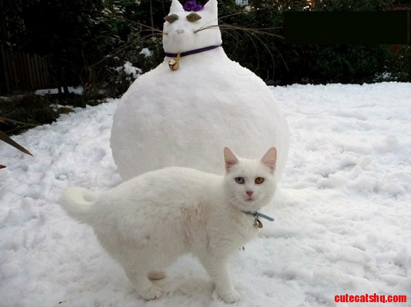 Thats when snowball realized.