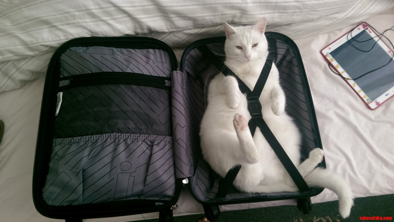 All packed and ready