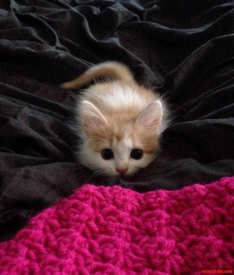 Am i looking cute
