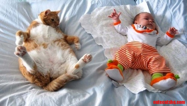 Kitten is trying to copy the kid…