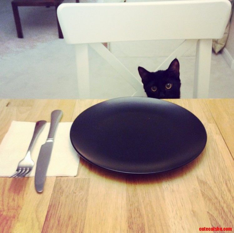 She always sits with us at the dinner table