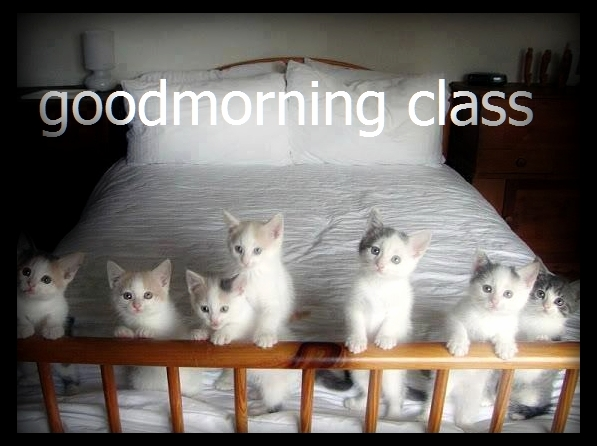 Good morning class of newbies
