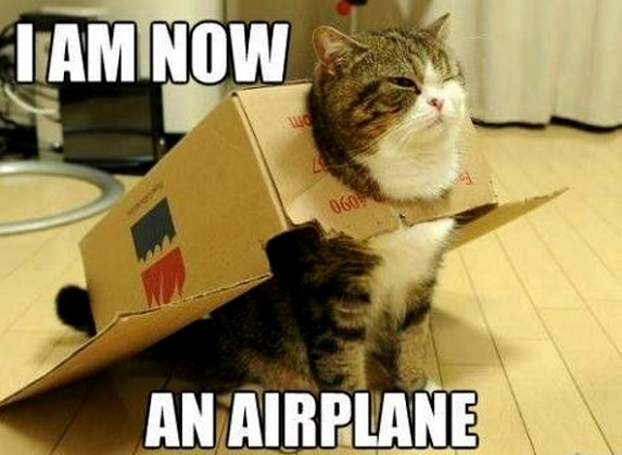 I am an aeroplane. old meme but still hilarious