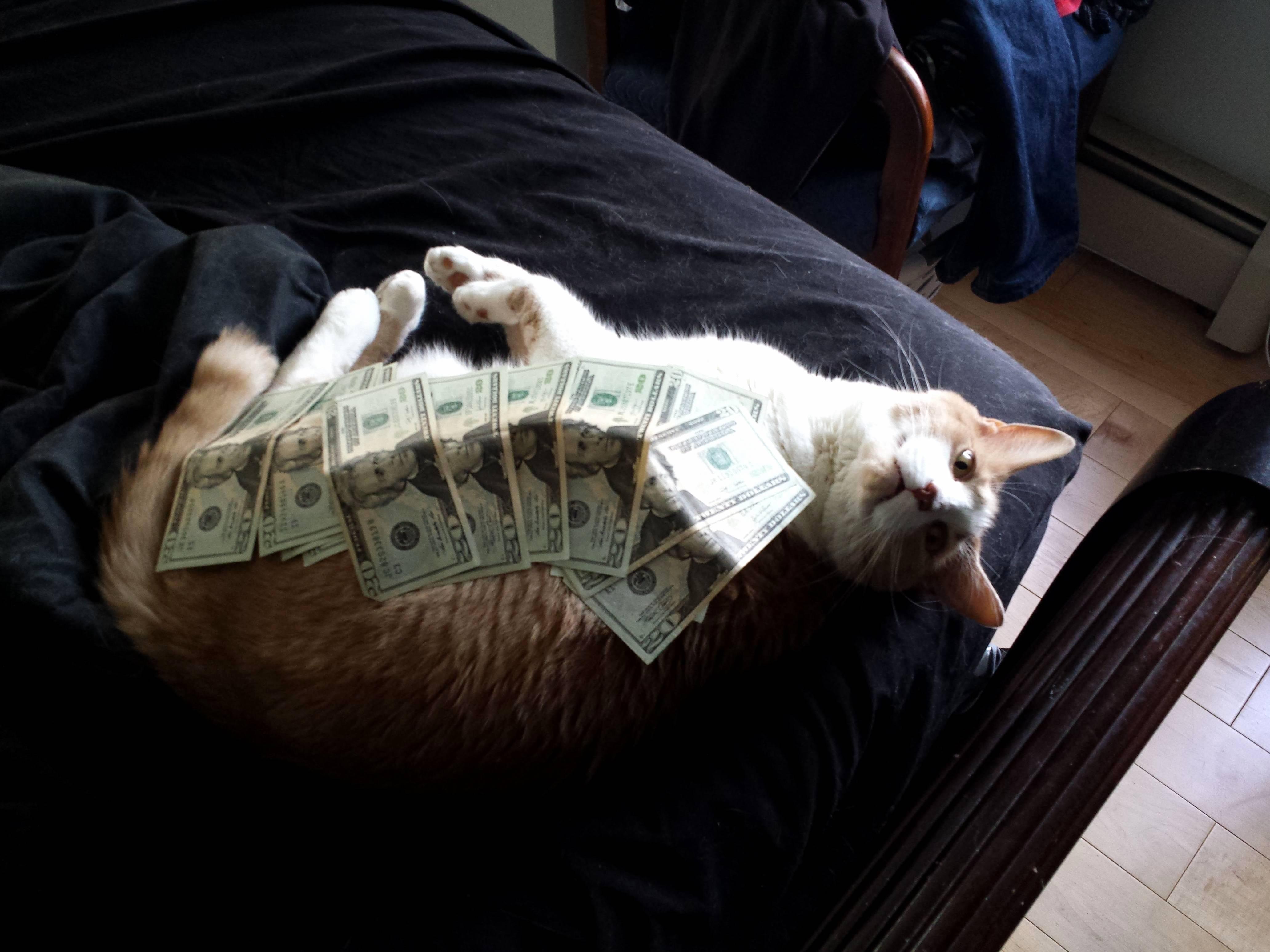 Money respect