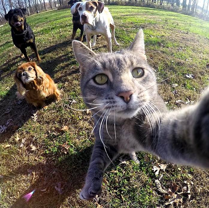 Lets take a selfie..