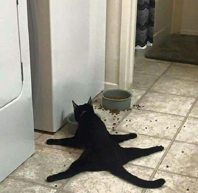 Cat.exe must restart in recovery mode.