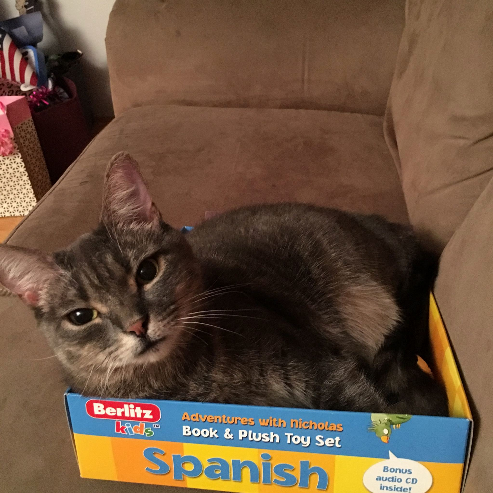 She wants to learn spanish
